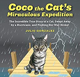 Coco the Cat's Miraculous Expedition