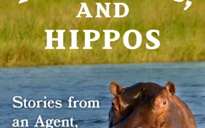Hits, Heathens, and Hippos